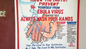 http://bulevard.bg/attachments/pictures-photos/0003/5551/medium/kak-da-se-predpazim-ot-ebola-miyte-ratsete-si.jpg?1413790636